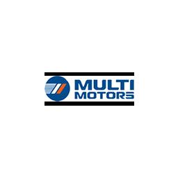 Мультимоторс